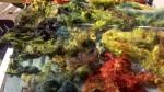 Alpaca shades of fall greens
