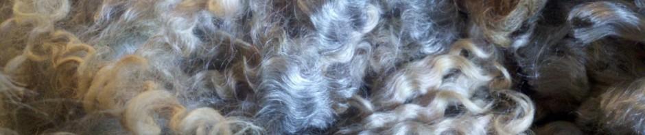 Leicester Longwool Fleece